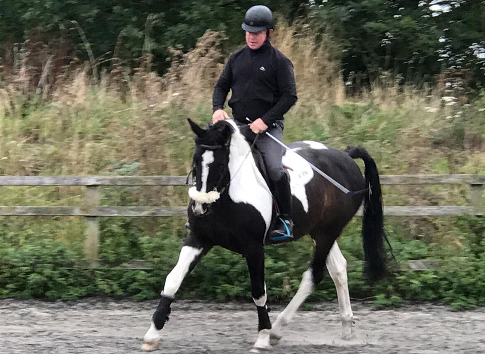 Richard Maxwell - equine behaviour consultant